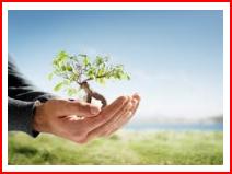 Nurture your Real Estate Agents